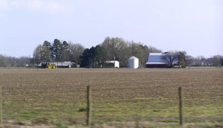 Beautiful East Arkansas farm
