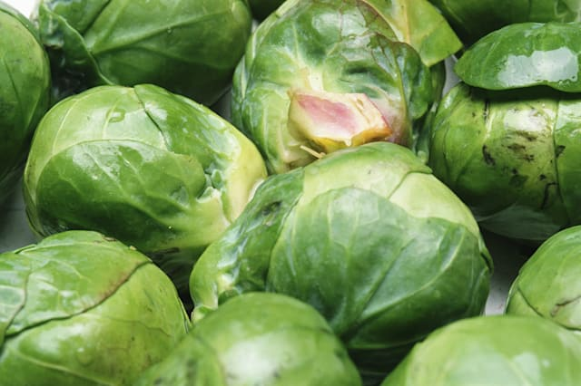 |color|horizontal|exterior|background|center|food|brussels sprouts|freshness|agriculture|vegetable|green|pink|V19|Resource Book