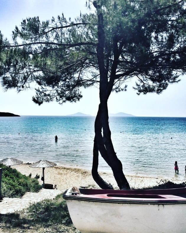 6 ragioni per visitare Alonissos e scoprire la Grecia