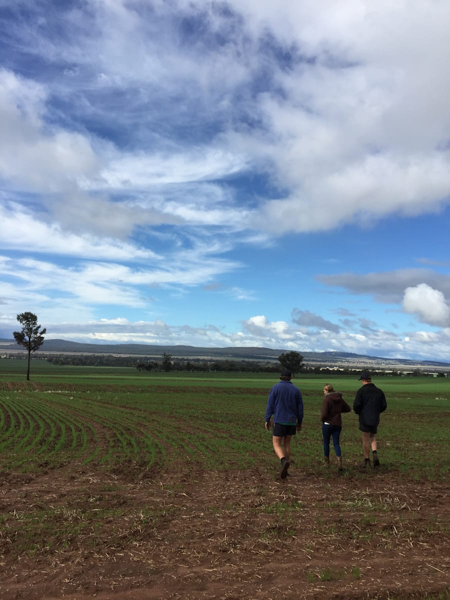 Facing Future -- James, Angus and Sophie Clift are worried about the longterm future of farming in the...