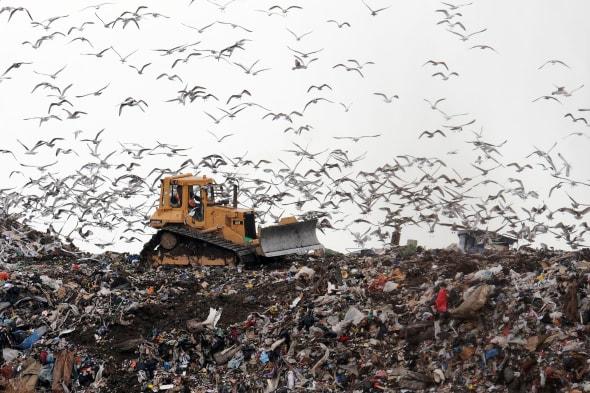 Call to ban materials from landfill