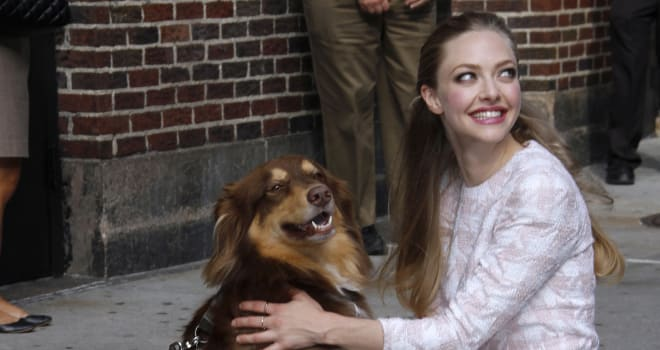 Amanda Seyfried and Finn