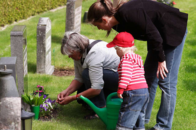 C5C6J4 Family visiting a gravestone at a graveyard funeral death Familj; vid; gravsten; adult; adults; blossoms; cemetery; child