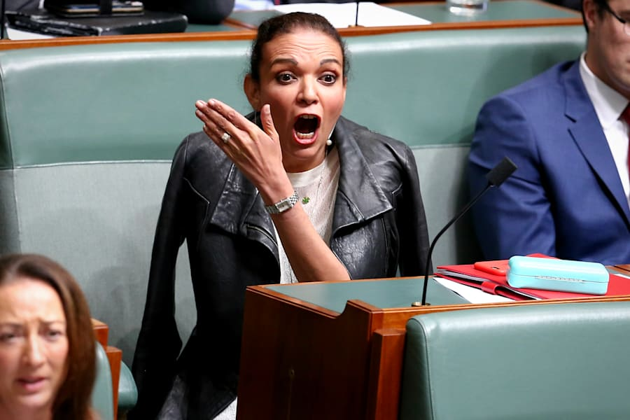 Ummm... what did he just say? Labor MP Anne Aly looks bemused by Dutton's