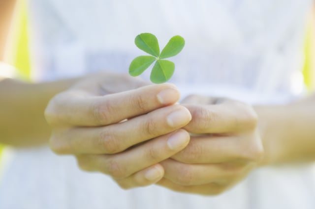 Bizarre superstitions from across the world four-leaf clover