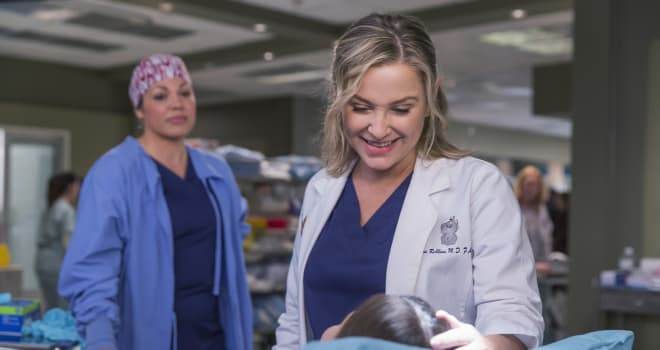 "ABC's ""Grey's Anatomy"" - Season Twelve"