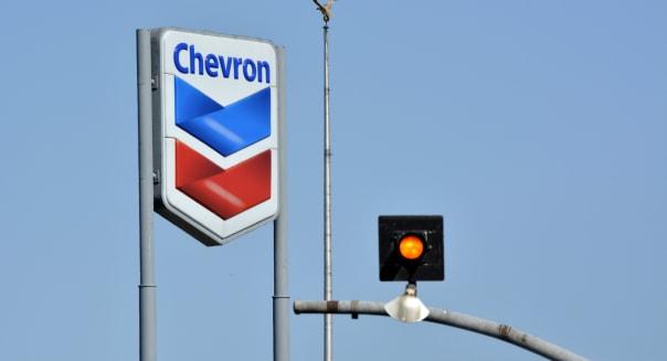 Chevron Sign  and Bird on a pole - DSC2590