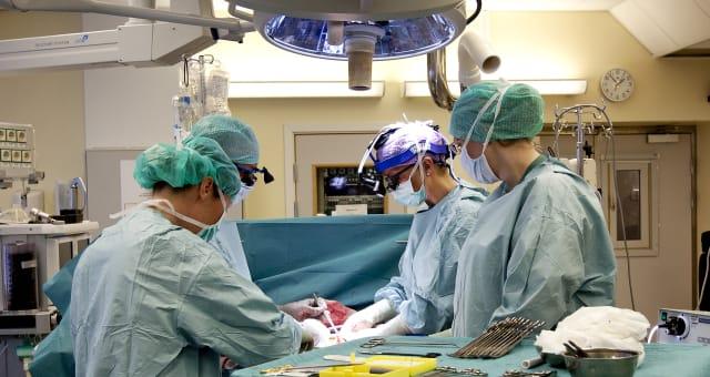 Sweden Womb Transplant