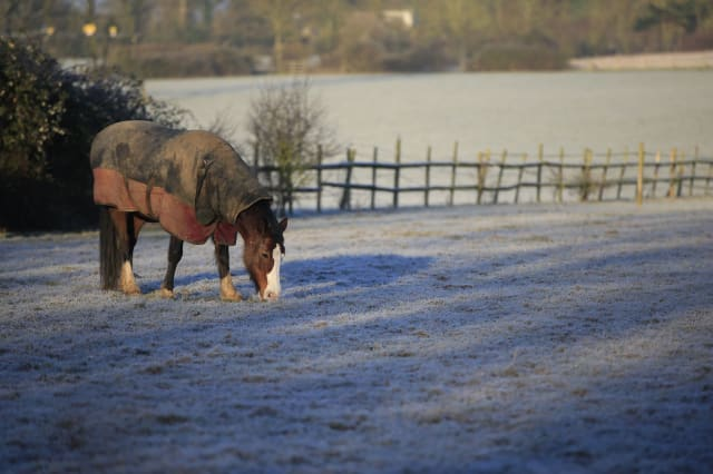 UK weather: 'Beast from the East' to bring snow showers