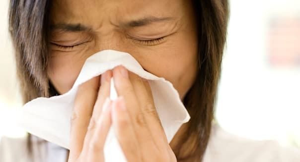 B6DT3R Woman sneezing into a handkerchief.Keywords :  handkerchief, blowing, sneezing, woman, holding.  Allergies.