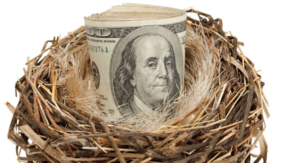 Retirement nest egg of cash in a nest isolated on a white background