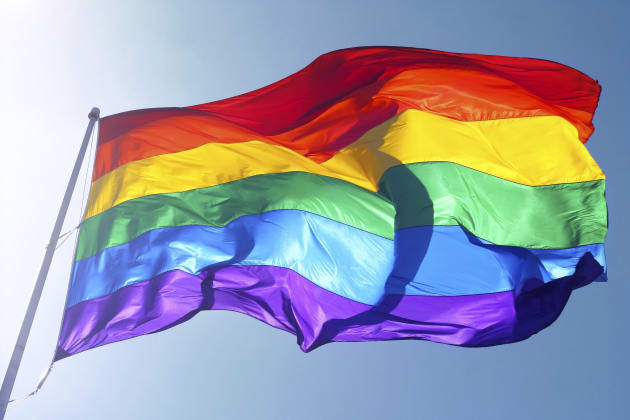 Taber, Alta. Pride Flags Stolen And Burned Will Be
