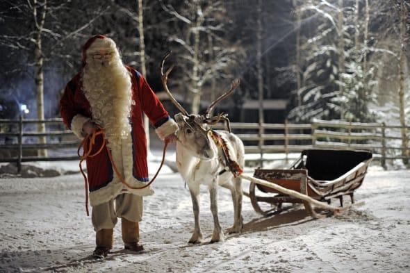 Santa Claus prepars his Reindeer and sle