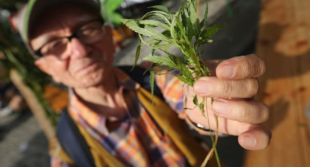 Cannabis Supporters Hope For Legalization