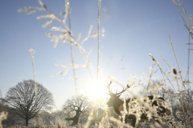 Is there a 'snowbomb' heading to UK for Christmas?