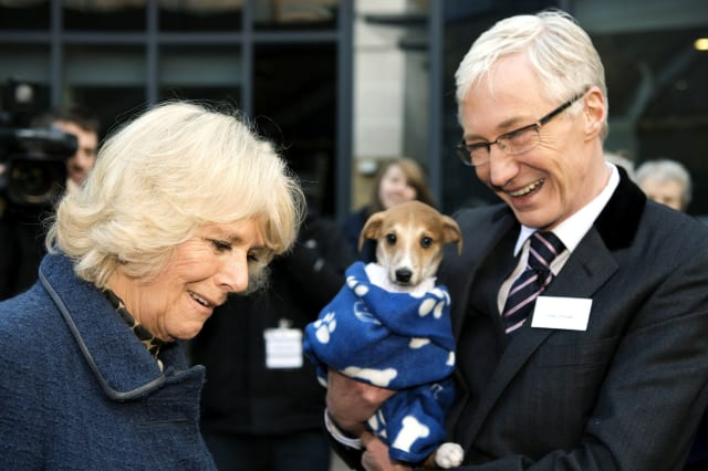 Royal visit to Battersea Dogs Home