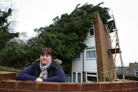 Row over toppled tree