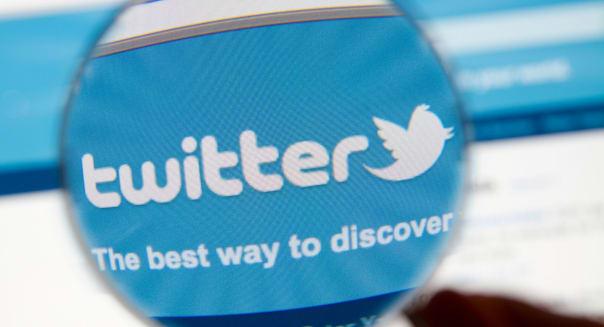 Twitter website bird logo with magnifying glass.