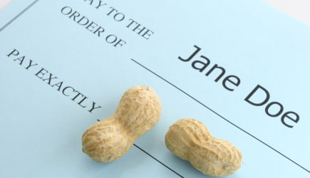 'Jane Doe's paycheck is too small.  Can illustrate poverty, unfair labor practices, or gender based pay inequity.'
