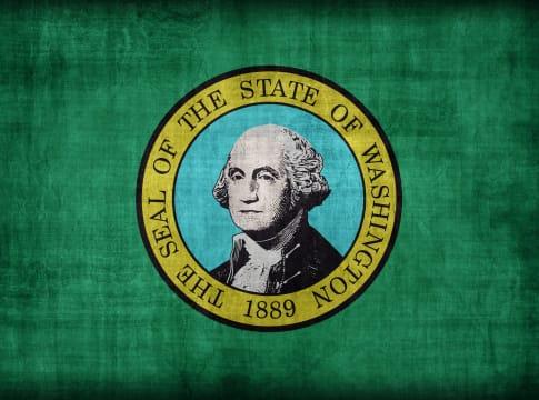 washington flag pattern  retro...