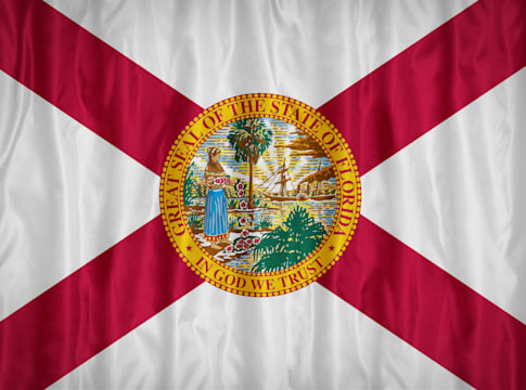 florida flag pattern with a...