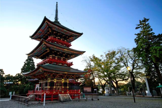 JAPAN NARITA SAN Temple : : PAGODA : :