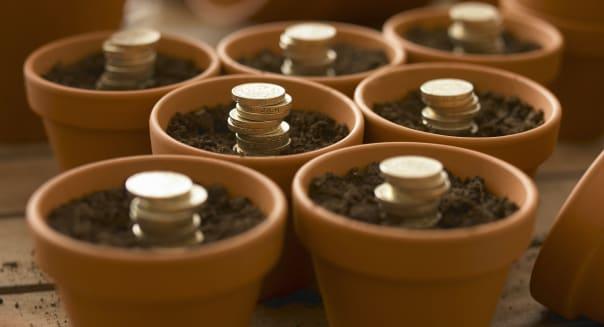 Stacks of coins growing in flowerpots