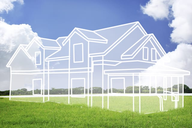 house vision on green meadow....