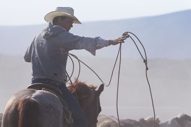 Trusted professions - and how to avoid the cowboys