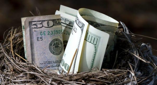 A bird nest full of American money.