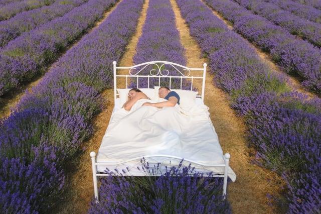 Couple sleeping in bed in lavender field