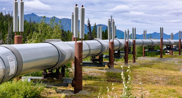 Aleyska, or Trans - Alaska Pipeline, Chugach Mountains, north of Valdez, Alaska, USA