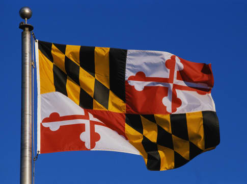 This is the State Flag flying on a flagpole against a blue sky. The flag has black and white checks with its symbol in the cente