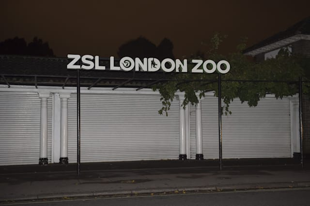 Teens break into London Zoo and film themselves with animals