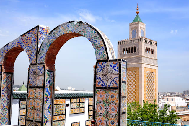 view over tunis medina to the great mosque