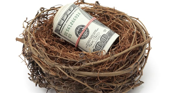Money in bird nest