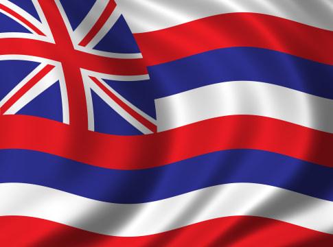 flag of hawaii waving in the...