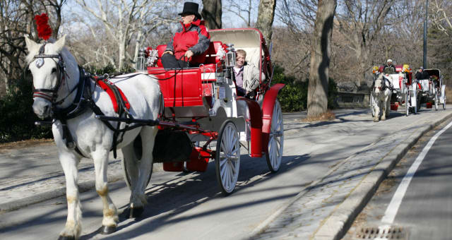NY Carriage Horses (Horse-drawn carriage roll through New York's Central Park,  Wednesday, Jan. 27, 2010. New York Gov. David Pa