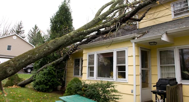 Tree which has fallen on the roof of a house. Caused by Hurricane Sandy.