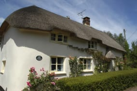 England, Devon, Traditional thatched cottage....
