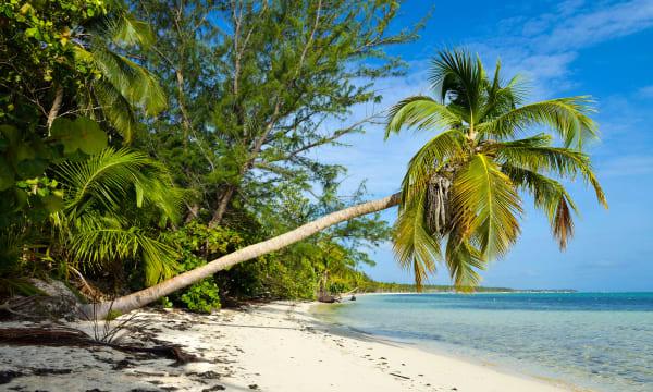 Dominican Republic : Punta Cana beach, Dominican Republic, Caribbean