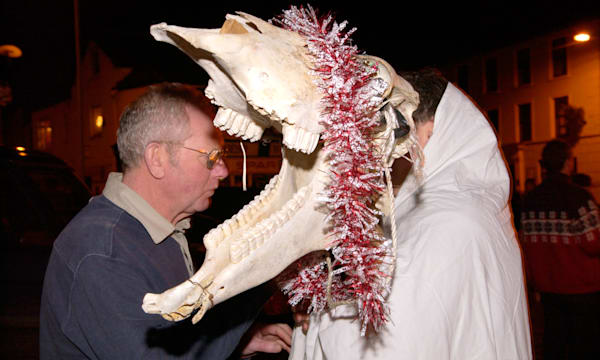 Mari Lwyd, decorated horses skull, for New Years Eve celebrations on the streets of Llanwrtyd Wells Powys Mid Wales UK