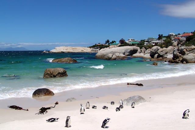 Cape Town revealed as cheapest long haul holiday destination