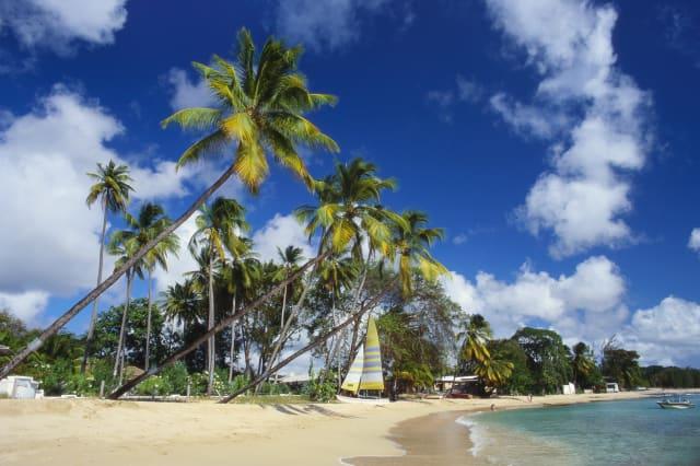 Mullins Beach, St Peter Parish, Barbados, Caribbean
