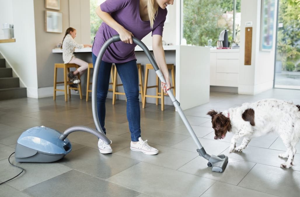 Woman vacuuming around sleeping dog