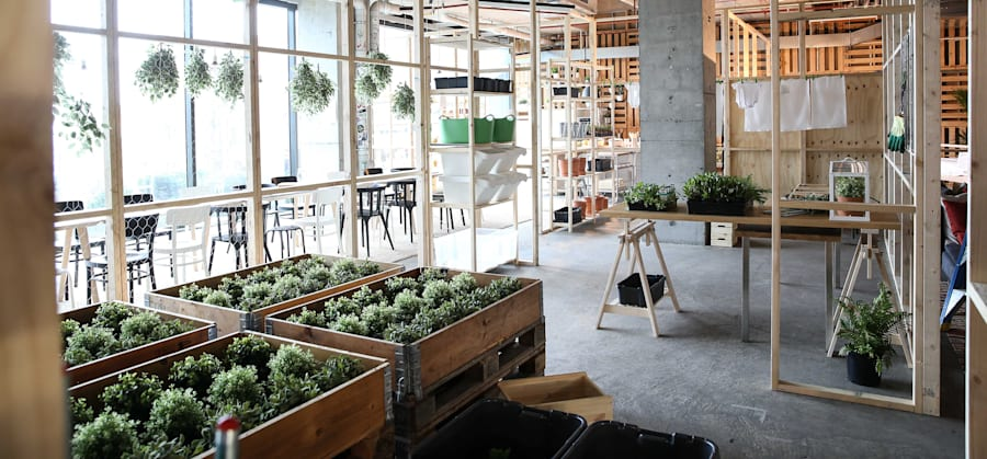 IKEA's interpretation of a sustainable home, with herb gardens and visible storage so food isn't hidden...
