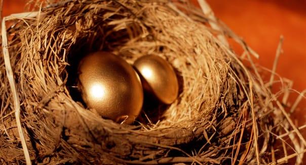 Golden eggs in nest.