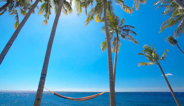 Hammock between palm trees on beach, Bali, Indonesia, Southeast Asia, Asia