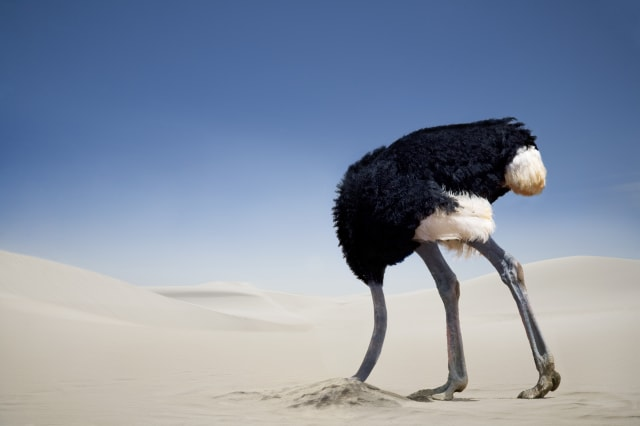 18-25 years old? Don't be an ostrich!