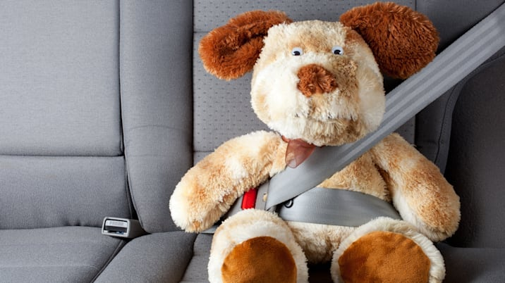 stuffed toy with seat belt...